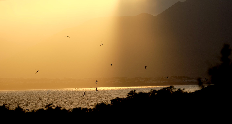 210 Morgensonne1