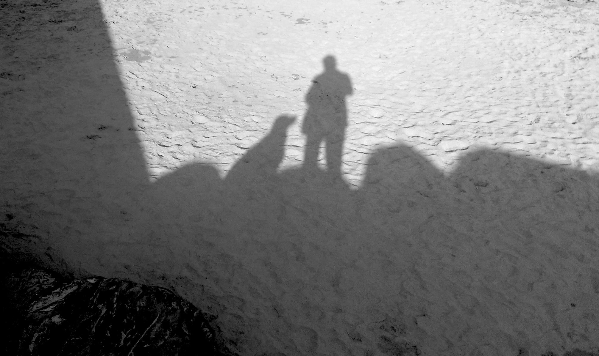 Schatten eines Hundes und eines Mannes auf dem Strand